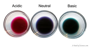 cabbage juice colors on A Dash of Science.com